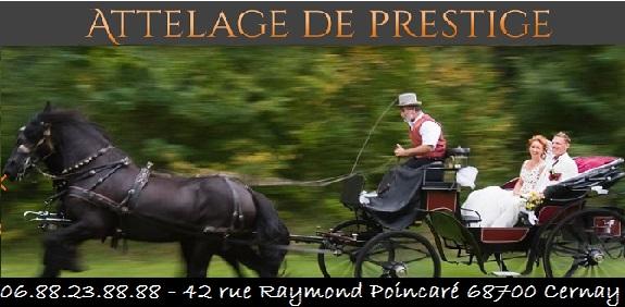 Attelage prestige 68700 Cernay